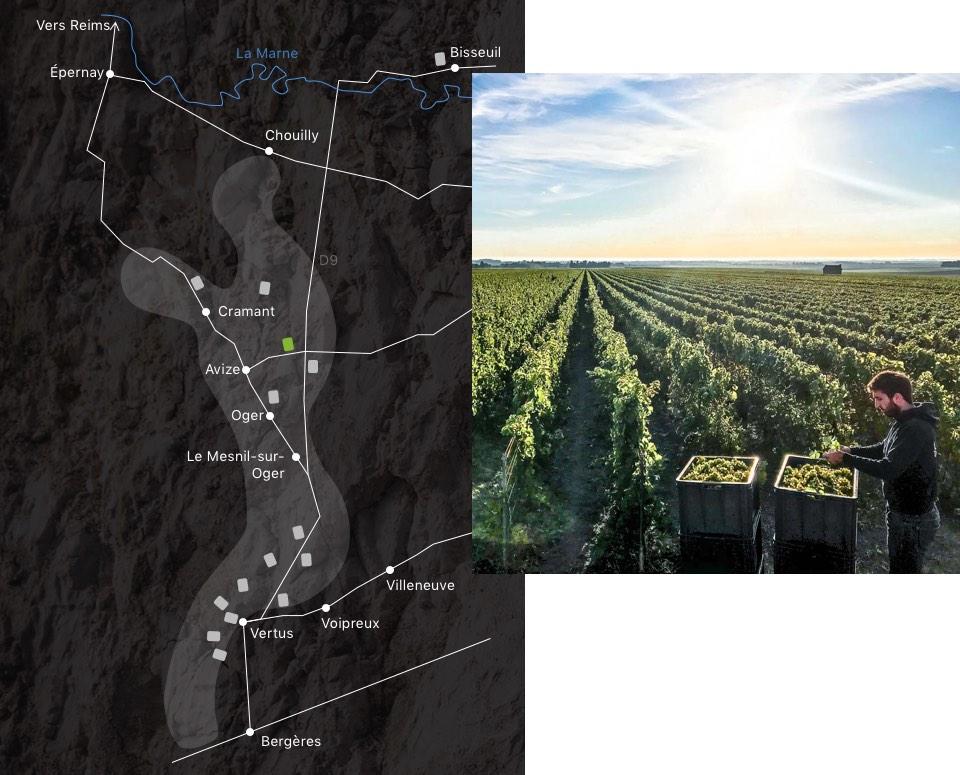 champagne-larmandier-carte-domaine--chemins-avize