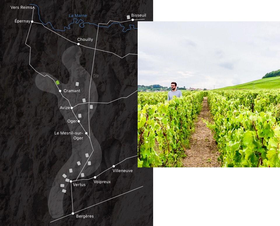 champagne-larmandier-carte-domaine--cramant-nature