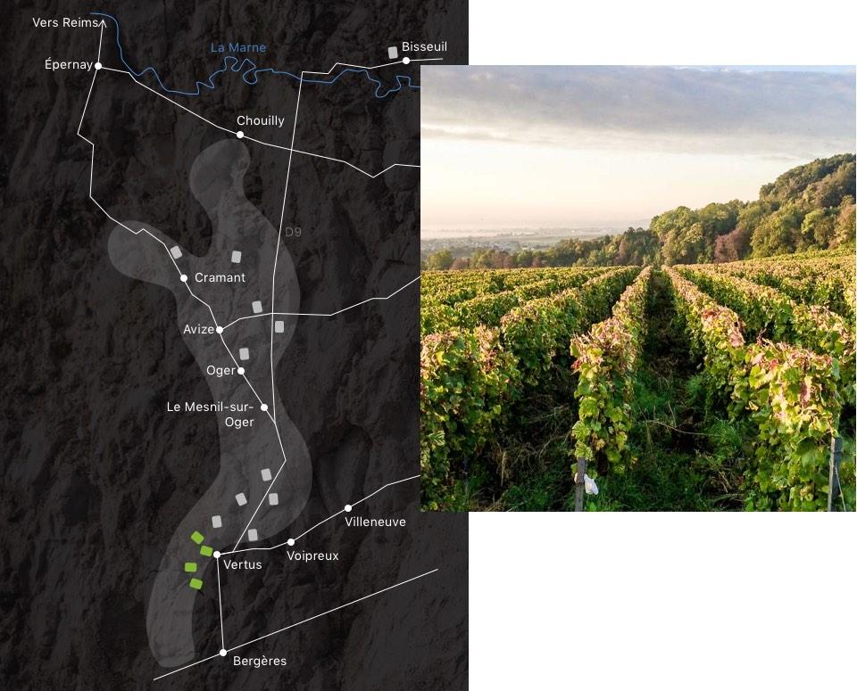 champagne-larmandier-carte-domaine--latitude