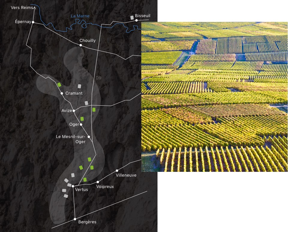 champagne-larmandier-carte-domaine--longitude