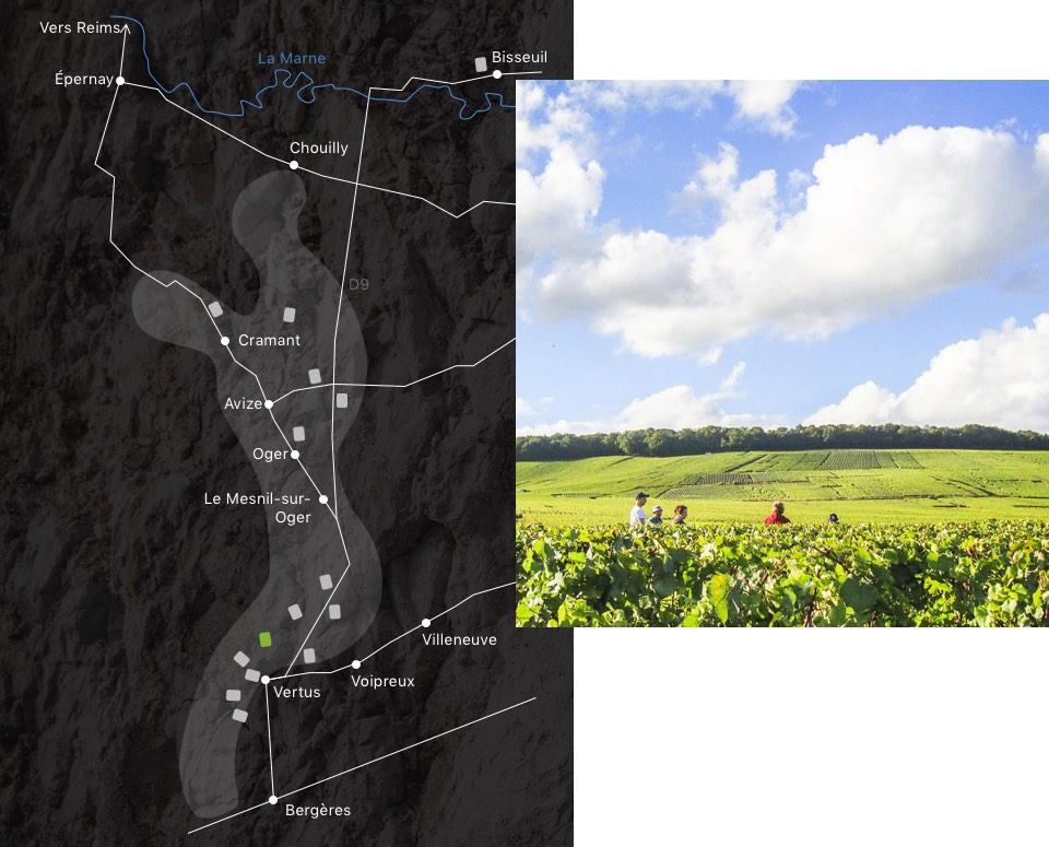 champagne-larmandier-carte-domaine--terre-vertus